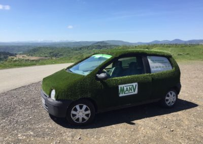 Voiture Gazon - Twingo Gazon - MAN V